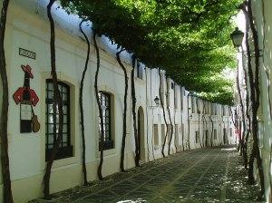 #13 Jerez, Spain