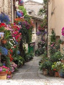 #9 Spello, Italy