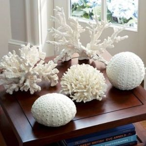 decorating-with-sea-corals-stylish-ideas-10