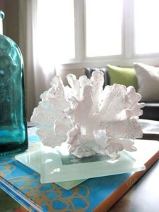 decorating-with-sea-corals-stylish-ideas-9