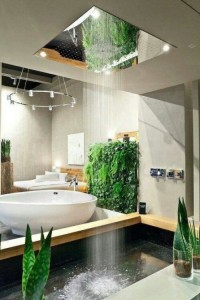 cool-and-creative-shower-designs-youll-love-13-554x831