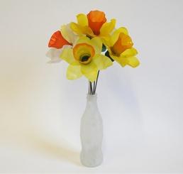 Daffodil Half Dozen 2